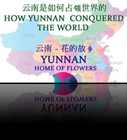 Flower Powered (How Yunnan Conquered the World)